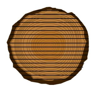 Schnittmuster Normalschnittholz