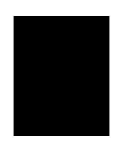 Bauform Telecaster